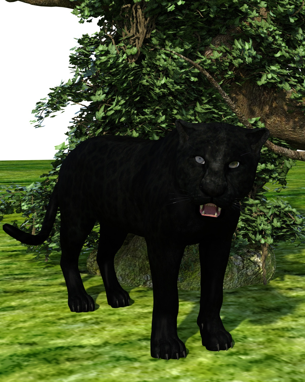 Attempting a panther